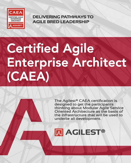 CAEA   Agile Enterprise Architect Certificaiton