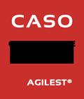 CATO agile executive training