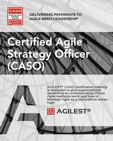 CASO agile executive training