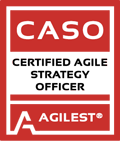 CATO agile executive training